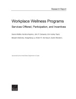Microsoft Word - Wellness report -final version clean.docx